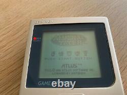 Amazing Tater Prototype 1991 Nintendo Gameboy Classic DMG Game Atlus Rare