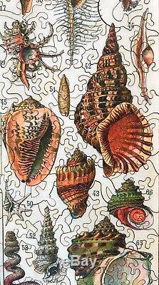 LIBERTY WOODEN Jigsaw PUZZLE Ocean MOLLUSCS Varieties & SEA Creatures 554 Pieces