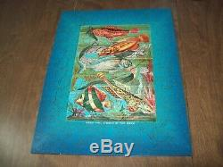 Liberty Wooden Puzzle-Beautiful Fishes of the Deep