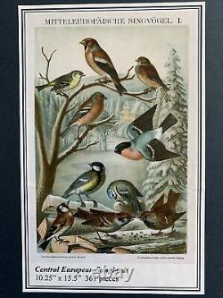 Liberty classic wooden jigsaw puzzle. Central European Songbirds. 367 Pieces