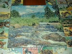 VTG Par Wood Jigsaw Puzzle-A LITTLE OF THE ANIMAL WORLD-525pcs/19 figs